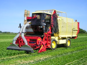 Industrial harvester-loaders for vegetables - Harvester-loaders for harvesting fresh vegetables for industrial use or medicinal plants in fields. Available with 100 HP to 140 HP engines and a minimum working width of 1.70 m to a maximum of 3.10 m.