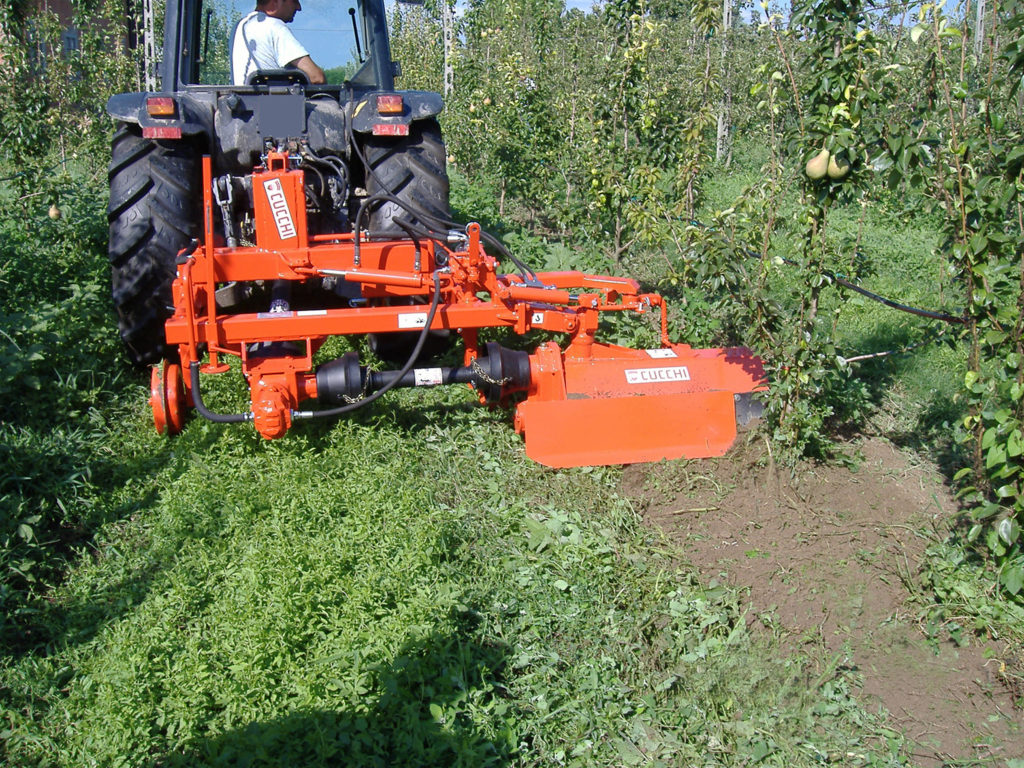 INTER-ROW ROTARY HOE for vineyards and orchards mod. SI1 - working width: 40/50/80 cm. - frame widths: various