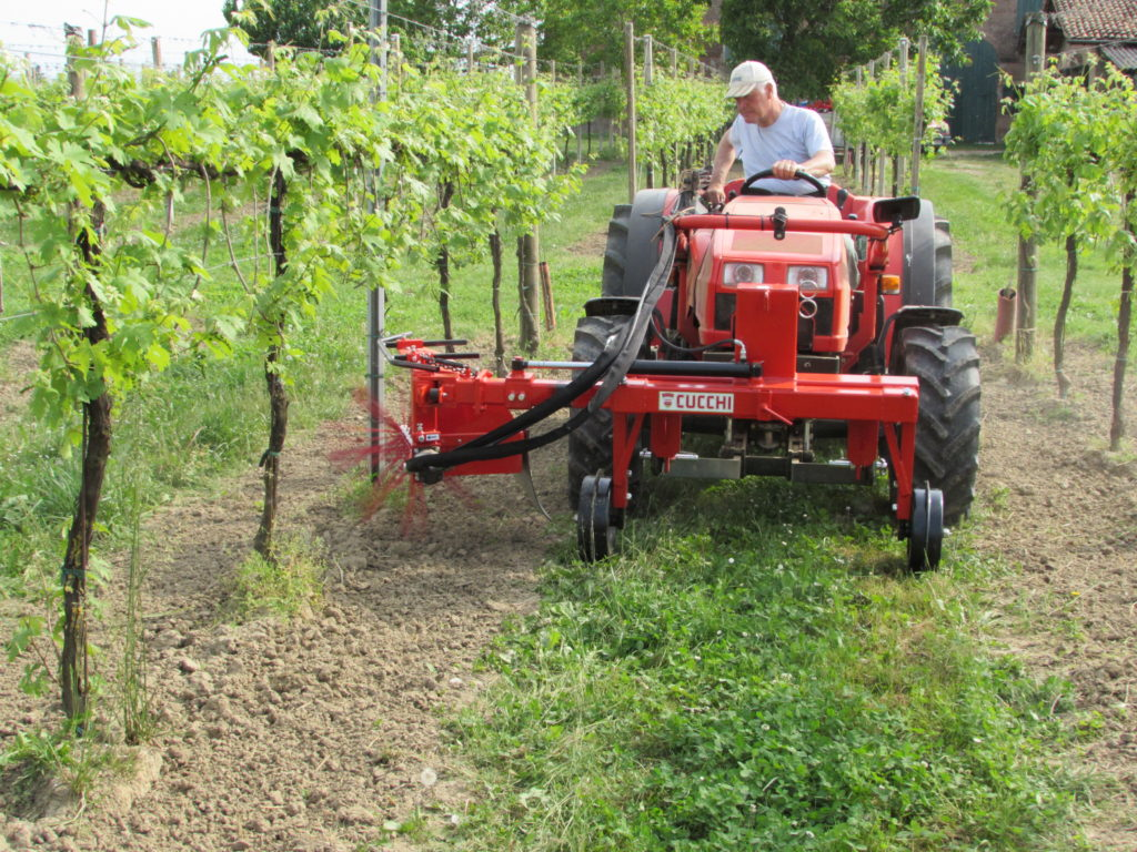 SHOOT AND WEED REMOVER WITH UNILATERAL WHIPS for vineyards and orchards  - with or without a separate hydraulic control unit